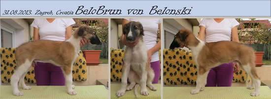BeloBrun Von Belonski