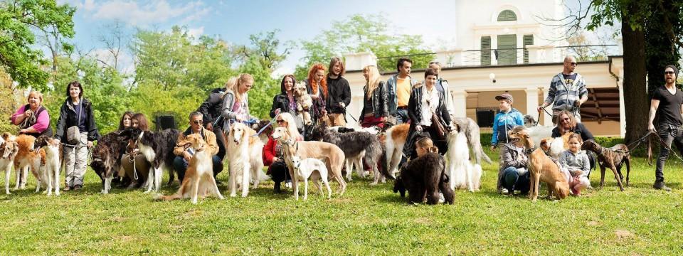 Okupljanje članova kluba u Maksimiru - Foto: Sighthounds Club of Croatia