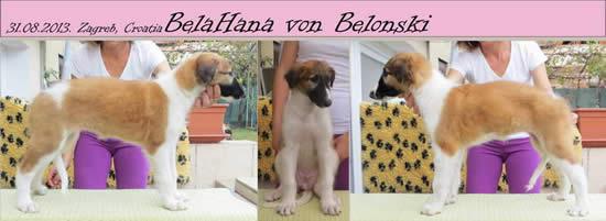 BelaHana Von Belonski